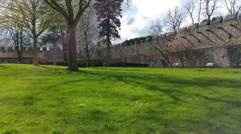 Innenhof der Burg Creuzburg
